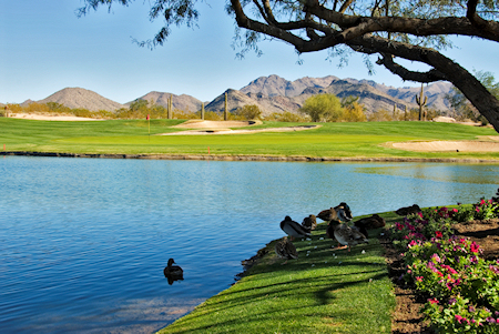 Grayhawk golf and water