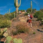 Hike the McDowell Sonoran Preserve