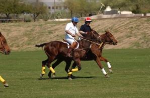 Polo Scottsdale
