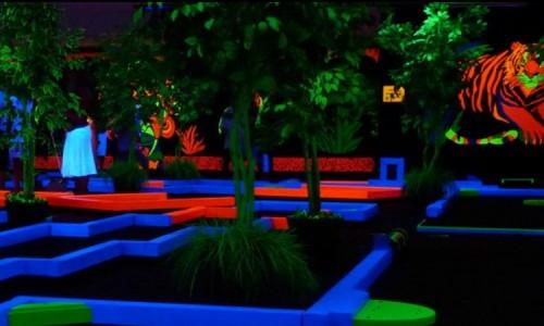 Play Glow-in-the-Dark Mini Golf in Scottsdale
