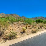 13563 E Ocotillo RD, Scottsdale, AZ 85259, Home for Sale - ocotillo_02_1000x668