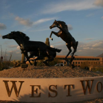 Come to Westworld Scottsdale for the 3rd Annual Polo Championships
