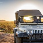 Top 5 Tours in Scottsdale