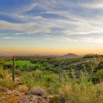 10421 E Chia Way, Scottsdale, AZ 85262 - Home for Sale - DSC_9035